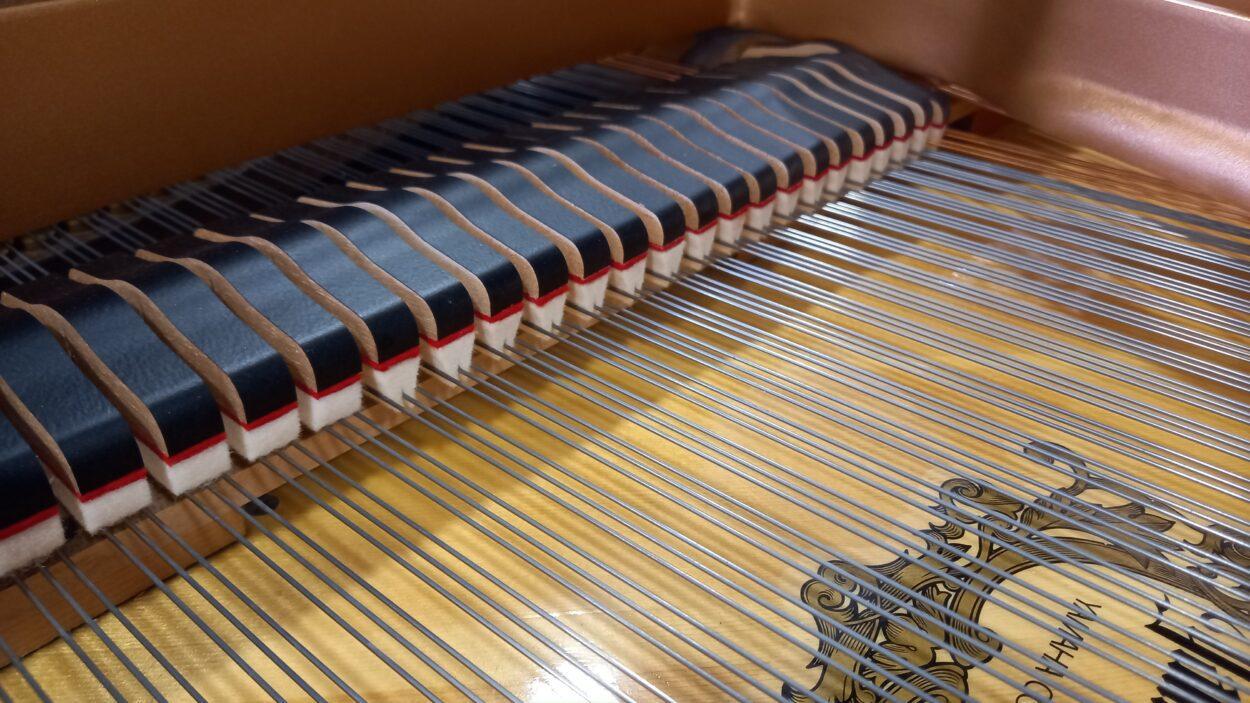 Yamaha C2L Grand Piano - C2 - Dampers